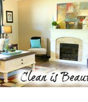 Logo Perfect Clean