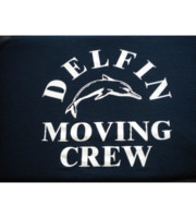 Logo Delfin Trucking Moving