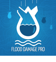 Logo Flood Damage Pro