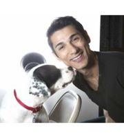 Logo Dallas Doggies