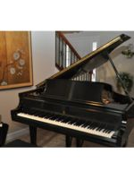 Logo Burger Piano Service