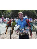 Logo Macaws and Cockatoos