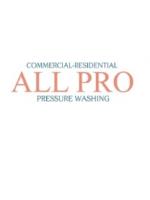 Logo ALL PRO pressure washing