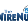 Logo The WireNut