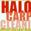 Logo Shalom Carpet cleaning