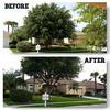 Logo McClean Tree Service & Lawn Care