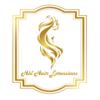 Logo HBL HAIR EXTENSIONS