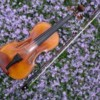 Logo BROOKLINE VIOLIN LESSONS