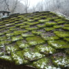 Logo Chicago Roof Masters. FLAT ROOF EXPERTS, ROOF RESTORATION, FREE ESTIMATES