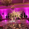Logo Elite Wedding Design. Uplighting Rental- $20
