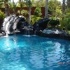 Logo Swimming Pool Remodeling