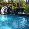 Logo Swimming Pool Remodeling
