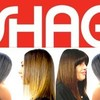 Logo 1 Womans Haircut Appointment to First Response $20 (you save $30) SHAG Hair Salon
