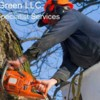 Logo CareGreen LLC. Landscaping Lawn Care, Tree Services & More