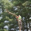Logo JB's Tree Service