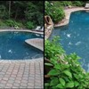 Logo Pool Help? Pool & Yard Renovation? Well, call POOLDOCTORS!
