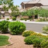 Logo YARD LAWN AND TREE CARE - Weed control and spray...