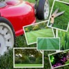 Logo Rubens Lawncare :) reasonable prices