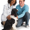 Logo Banfield Pet Hospital