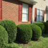 Logo Leaf removal, landscaping service and more