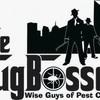 Logo Bug Bosses. $49 whole house Pest Control