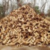 Logo SEASONED FIREWOOD! $80 per rik!