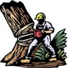 Logo Tree Removal & Pruning Services (Lisenced&Insured)