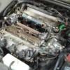 Logo Auto Repair and Maintenance (oil changes, fluid flushes valve cover gaskets drive belts)