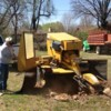 Logo BALL'S STUMP GRINDING