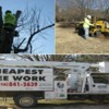 Logo Cheapest Tree Work - Tree Removal or Stump Grinding
