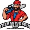 Logo Tree Wise Men - Removal, Stump grinding, etc