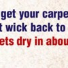 Logo Christy's Carpet Cleaning (Read About Our $60.00 Special)