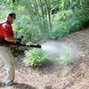 Logo CERTIFIED pest control $50