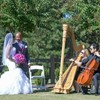 Logo STRING QUARTET/TRIO FOR ANY EVENT! - Aristo Strings NYC...