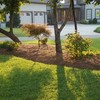 Logo Landscaping and Lawn care.