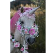 Enchanted FairyTale Pony Parties