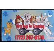 Dirty Dogs Pet Grooming