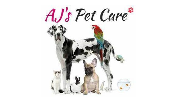 aj s pet care   training pet sitting meds overnight