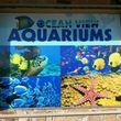 Photo #1: Ocean View Aquariums