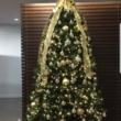 Photo #3: Christmas Grinch Lights