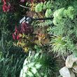 Photo #3: Ds Landscaping & Design
