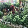 Photo #6: Ds Landscaping & Design