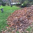 Photo #17: LAWN CARE, LANDSCAPING, INSTALLATION, QUALITY WORK,