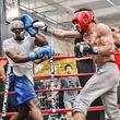 Photo #11: Boxing & Conditioning Training with NYC Golden Gloves Champ