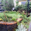 Photo #5: Rose City's Premier Landscape Maintenance