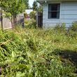 Photo #11: GENERAL PROPERTY CLEAN UPS