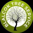 Photo #1: Blalock Tree Service