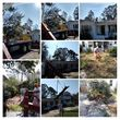 Photo #6: JH Tree Service