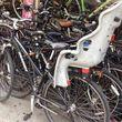 Bikes rentals. Frank's bike shop