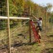 SAM & Co. Quality Fencing, Dozerwork, Barns and More